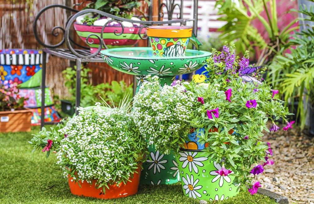 PLANTS PLUS9