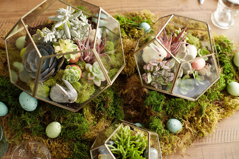 DIY Garden Projects for the Easter Long Weekend