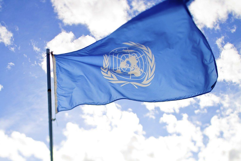 united nations flag with the olive leaf symbol