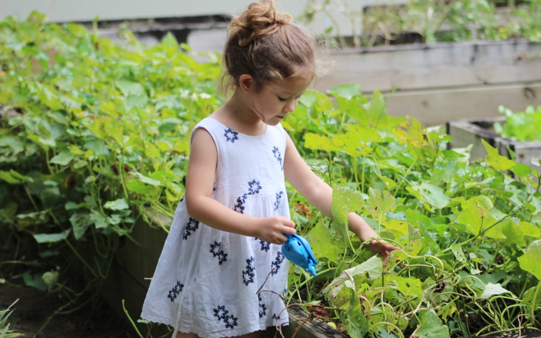 Did You Know Gardening Teaches Kids These 3 Things?