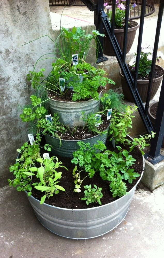 Stackable potted herb garden. North Queensland Garden Centre