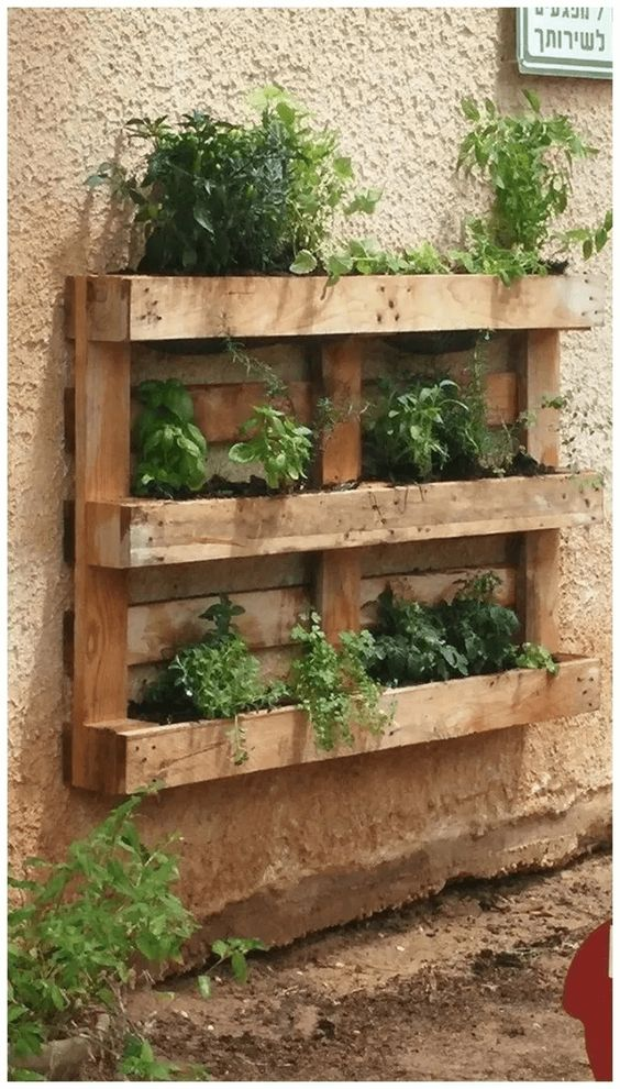 Pallet option for a vertical Herb Garden